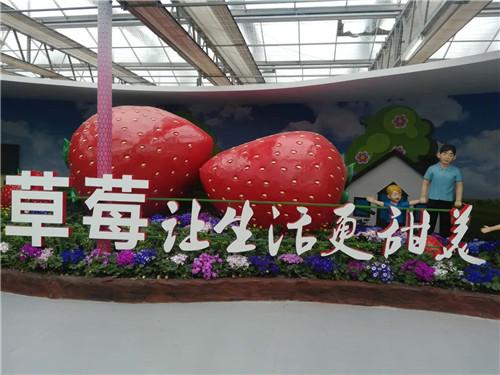 第六届北京农业嘉年华雪中开幕
